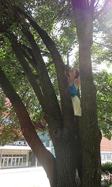 Climb, Julia, climb!