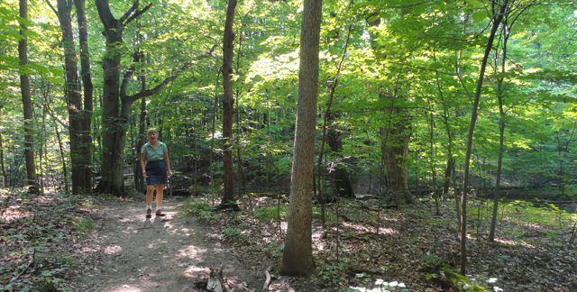 So I went on a hike with my mom. Who wants to go camping? It's just to calm my withdrawal, probably.