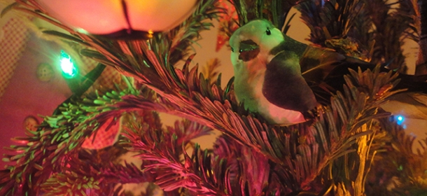 (I like these bird ornaments...even though, upon reflection, this one looks a wee bit angry.)