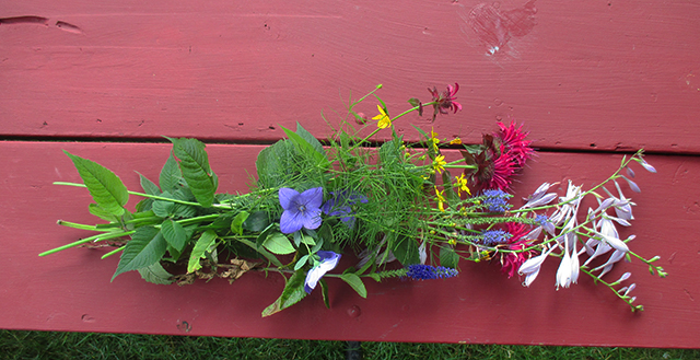 These flowers grew in my garden. Aren't they many levels of wonderful?????