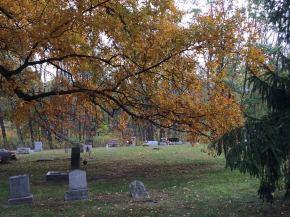 A short, spooky Halloweenstory!